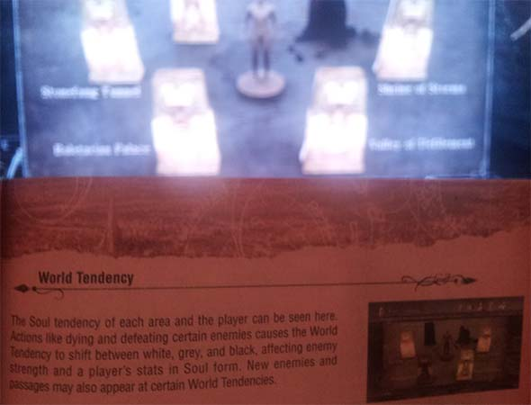 Demon's Souls - Tendency description in manual