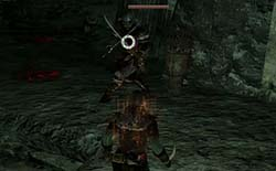 Dark Souls II - enemy swordmaster