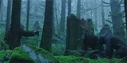 Dawn of the Planet of the Apes - forest meeting