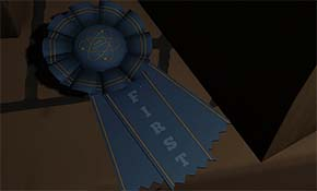 Gone Home - Kaitlin's #1 ribbon