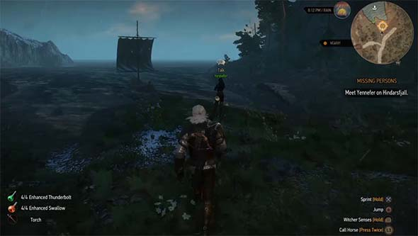 Witcher 3 - idle quest-giver