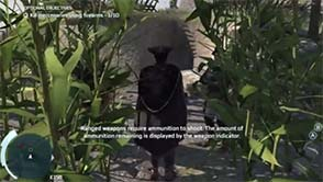 Assassin's Creed III - plantation raid