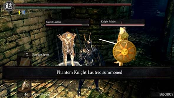 Dark Souls - summoned NPC