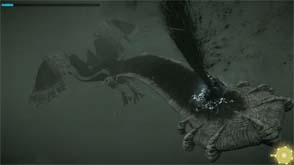 Shadow of the Colossus - Avion