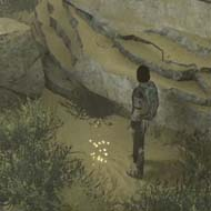 Shadow of the Colossus - gold coin