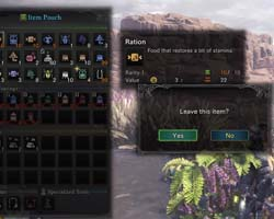 Monster Hunter: World - inventory full