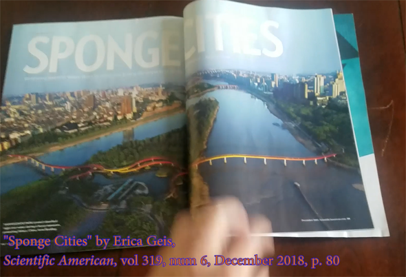 Scientific American, vol 319 - Sponge Cities