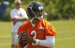 Chicago Bears - FA QB Jason Campbell in mini camp